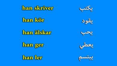 Photo de تعلم اللغة الدنماركية :: الدرس 1  لقاءشخص ما درس المفردات